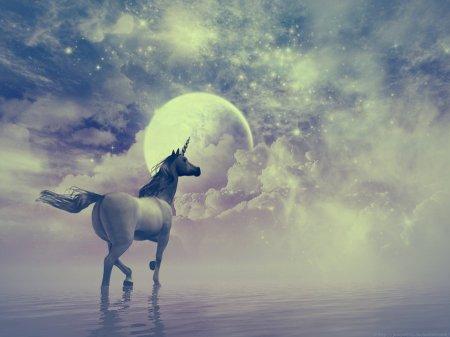 Вышел новый игровой автомат Unicorn Magic о волшебных созданиях
