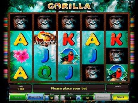Gorilla – увлекательный видео-слот казино Вулкан с уникальным дизайном