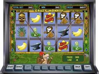 Crazy Monkey – увлекательный и прибыльный игровой автомат казино Вулкан