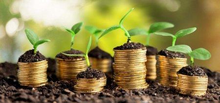 Инвестиции с максимальной доходностью