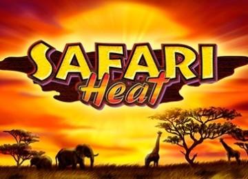 Какие параметры нужно настраивать в автомате Safari Heat
