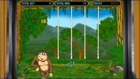 Ключевые параметры известного видеослота Crazy Monkey